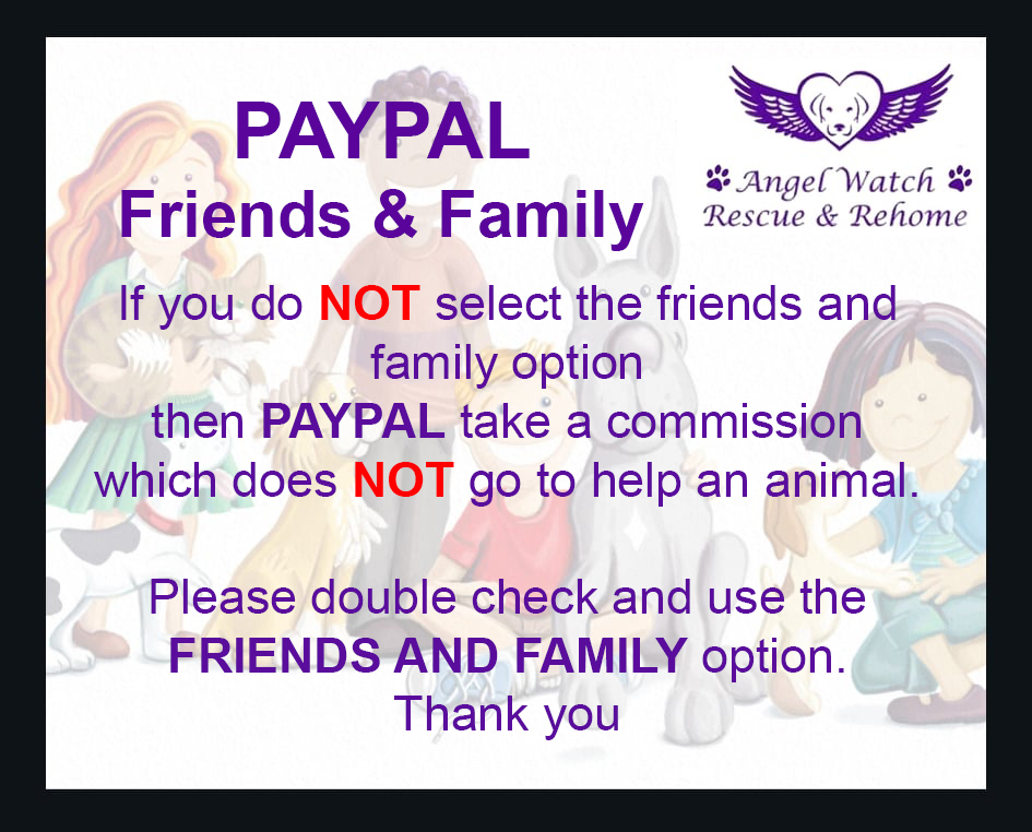 Info | Angel Watch Rescue And Rehome